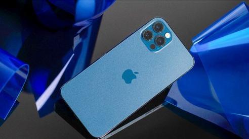 iPhone 12 Pro Max cháy hàng tại Việt Nam, iPhone 12 mini bất ngờ thành 'bom xịt'