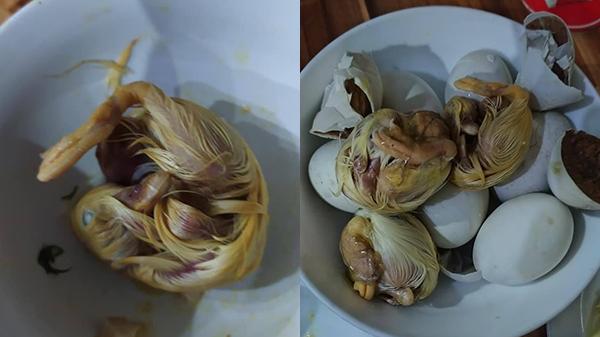 Mua trứng vịt lộn vì lời mời ngon nhất chợ, chàng trai rùng mình khi luộc chín: Con đầy lông, nguyên hình hài nhìn nổi gai ốc