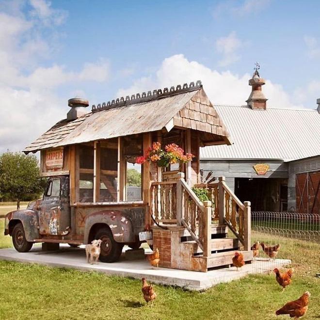 Ngôi nhà dành cho các chú gà theo chủ nghĩa xê dịch.