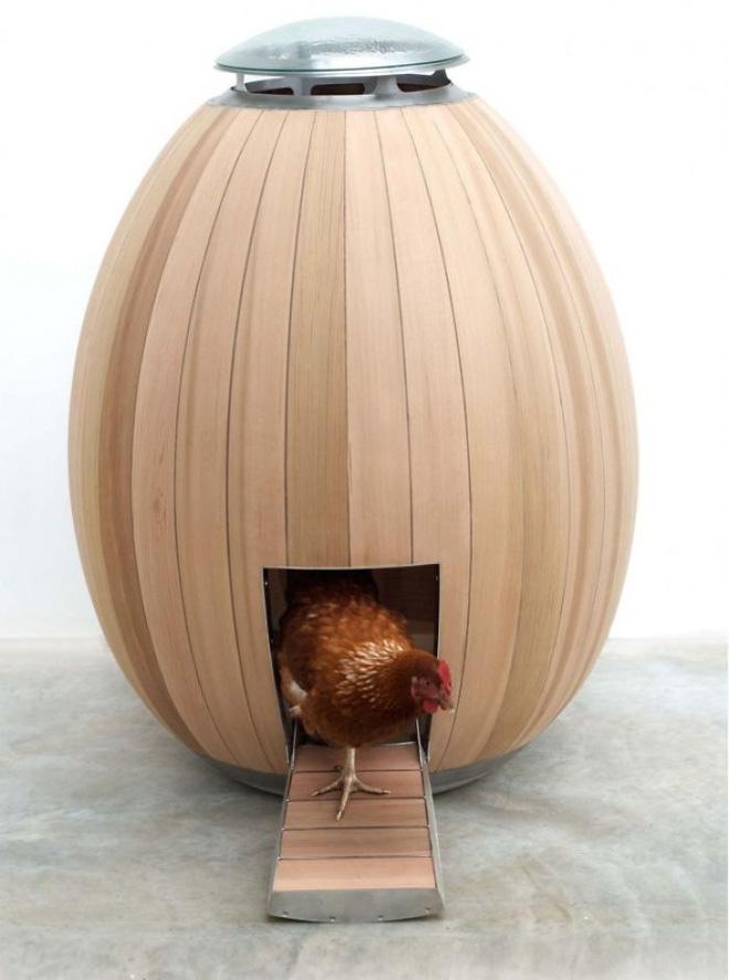 Chú gà yêu nghệ thuật tối giản.