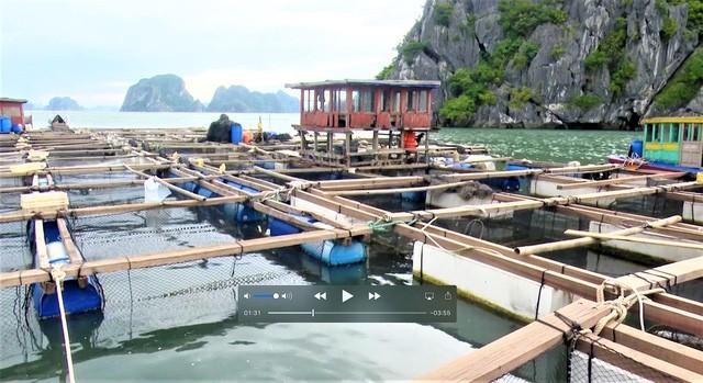 Quảng Ninh di dời, sơ tán dân tại các khu vực nguy hiểm trên nguyên tắc đảm bảo tuyệt đối an toàn, tính mạng, tài sản