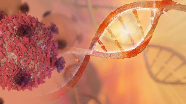 Ung thư tuyến tiền liệt là một loại ung thư có tỷ lệ chữa khỏi cao và tỷ lệ sống sót sau 5 năm có thể đạt tới 99%.