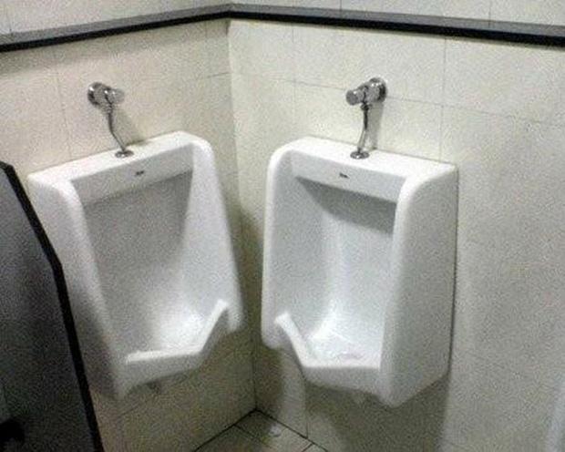 Bồn vệ sinh dành cho anh em cây khế mãi bên nhau.
