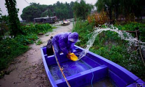 Một người dân tát nước khỏi một con thuyền do mưa lớn ở khu vực hồ Tai, tỉnh Chiết Giang- Ảnh: Reuters