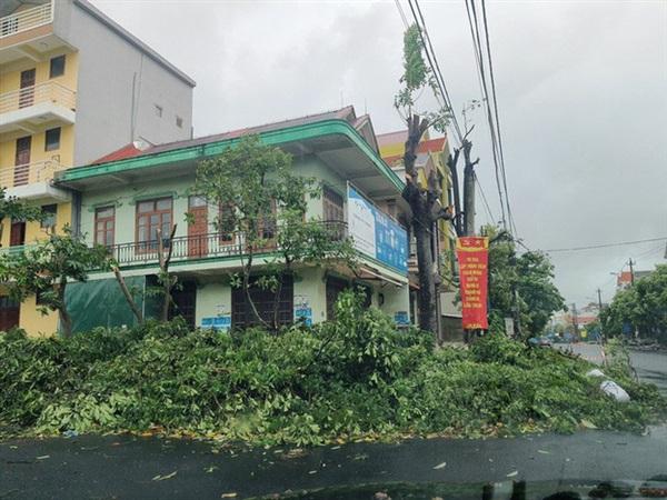 Cây cối đổ ngổn ngang trên đường Lê Lợi, TP Đồng Hới
