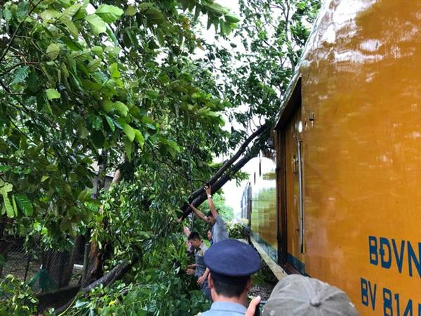 Cây xanh đổ chắn ngang đường ray khiến đoàn tàu phải dừng lại, khắc phục sự cố