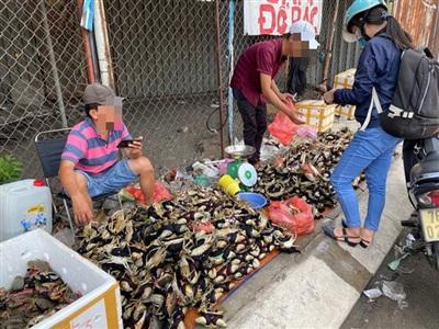 Cua đổ đống có giá từ 120.000-150.000 đồng/kg