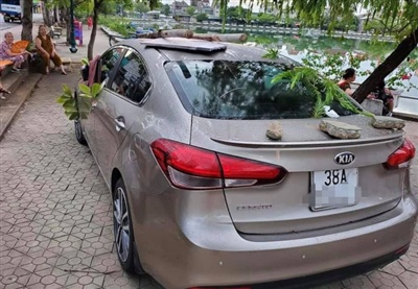 Chiếc ô tô bị ai đó phủ kín bằng rác và lá cây.