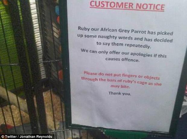 Thông báo của công viên về việc khách nên cẩn thận khi tiếp xúc với bọn này