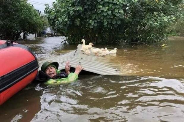 Người dân với gương mặt đau khổ, cố gắng cứu vớt đàn vịt giữa dòng nước lũ (Ảnh: Page Nghệ An)