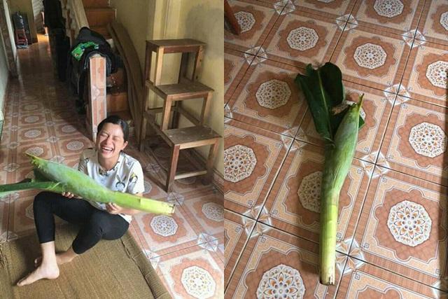 Ai mà ngờ được tăng hoa chuối cũng là quà 20/10 thì cũng đến chịu.