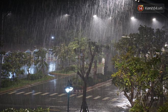 Quảng Ngãi mưa nặng hạt, gió to khiến cây cối nghiêng ngả (Ảnh: Hà Nam)