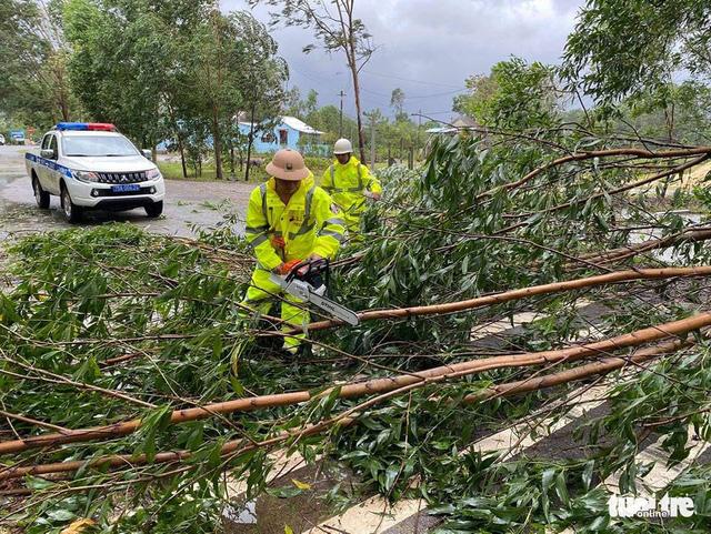 Cây đổ ngã do gió bão được lực lượng CSGT dọn dẹp ở huyện Phú Lộc, Thừa Thiên Huế - Ảnh: TRẦN HỒNG