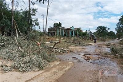 Bão cộng với lũ dồn dập khiến cây cối đổ ngã la liệt trên một tuyến đường tại huyện Đại Lộc
