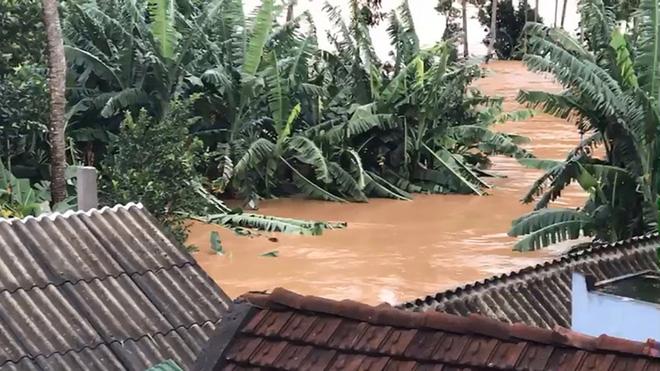 Mưa lớn khiến nước dâng cao gây ngập nặng trên địa bàn hai huyện Hoài Ân và An Lão của tỉnh Bình Định (Ảnh: PLO)