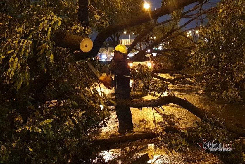 Nhân viên cây xanh đang khắc phục sự cố cây ngã la liệt trên đại lộ Võ Văn Kiệt