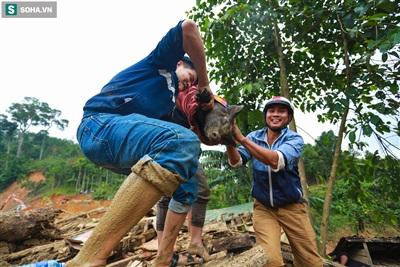 Người dân phát hiện một đàn lợn có 22 con may mắn thoát chết sau vụ sạt lở, các mảng tường bê tông sập xuống tạo thành các khe lõm giúp đàn lợn trú ẩn.