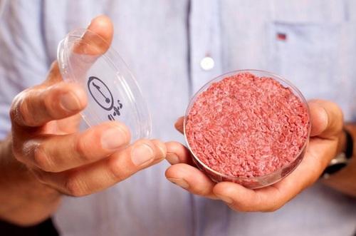 Những miếng thịt bò này được tạo ra từống nghiệm và có vẻ ngoài không khác nhiều so với thịt thường.