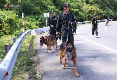 Các chiến sỹ dắt cảnh khuyển đi tuần tra trên đèo Hải Vân.