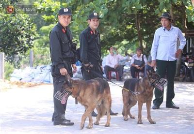 Chó nghiệp vụ tiếp tục được đưa đến hiện trường để hỗ trợ việc tìm kiếm.