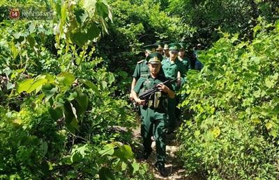 Nhiều nhóm trinh sát mang theo súng, roi điện, gậy, bộ đàm... đi vào rừng trong bán kính khoảng 3 km. Mỗi nhóm cách nhau khoảng 200 m.