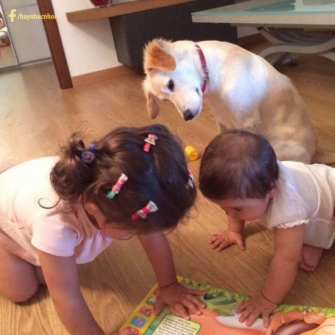 3 'nhóc tỳ' say sưa đọc sách - Nguồn ảnh: MXH.
