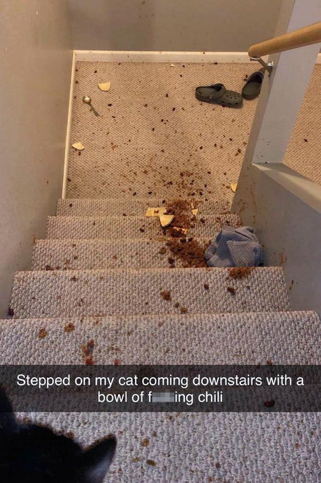6. Đang cầm cái bát ớt đi xuống cầu thang thì loáng quáng thế nào mà giẫm phải boss mới khổ cơ, sen ơi là sen.