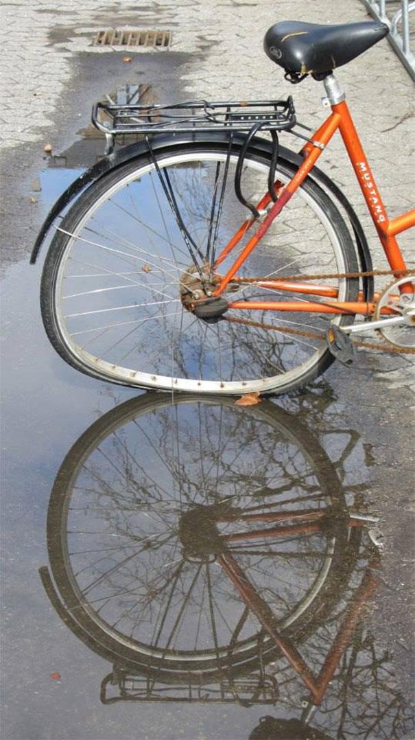 12. Cái xe đạp này có bị hỏng không nhỉ? Ai trả lời hộ tôi cái.