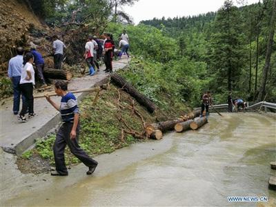 Người dân dọn dẹp cây cối bị đổ ngã do mưa lớn ở huyện Kiềm Giang, Trùng Khánh. Ảnh: Tân Hoa Xã
