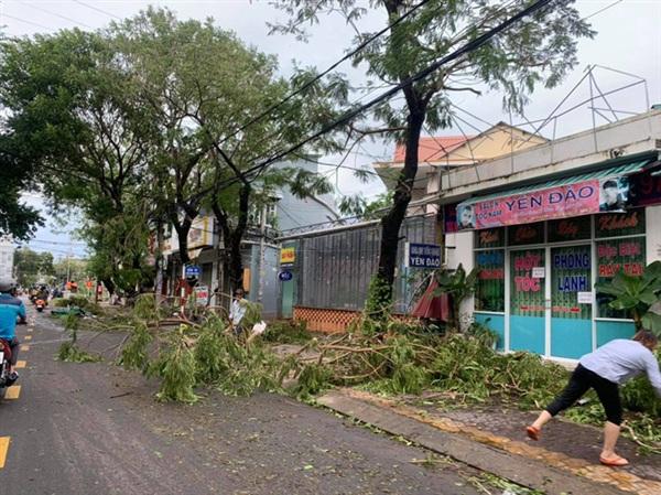 Người dân thu dọn cành cây gãy đổ (Ảnh: Xuân Thuỳ)