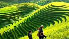 Thủ tướng phê duyệt nhiệm vụ lập Quy hoạch tỉnh Yên Bái thời kỳ 2021-2030, tầm nhìn đến năm 2050