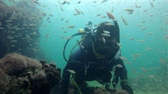Xác tàu nô lệ đầu tiên từ thời Mayađược tìm thấy ngoài khơi Mexico