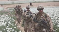 Afghanistan có còn là 'quốc gia ma túy' khi Mỹ rút quân?