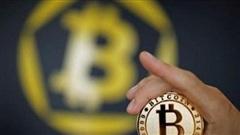 Bitcoin - Lợi nhuận đi kèm rủi ro