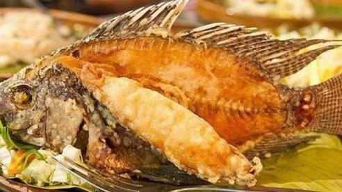 4 loại cá tuyệt đối không được cho trẻ ăn