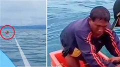 Đắm thuyền trong lúc ra khơi, ngư dân bám thùng nổi dập dềnh trên biển suốt 3 ngày