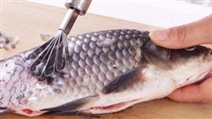 Mẹo cạo vảy cá dễ dàng không lo bị bắn bẩn