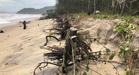 Nhiều tuyến bờ biển ở Huế sạt lở nặng sau bão số 5