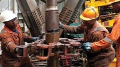 Giá xăng dầu ngày 23/9: Dầu tăng trở lại do tồn kho giảm