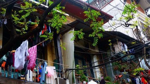 Giải mã hiện tượng di cư sang Long Biên 'an cư lạc nghiệp'