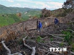 Phú Yên: Kiểm tra dấu hiệu vi phạm của nhiều cán bộ huyện chủ chốt