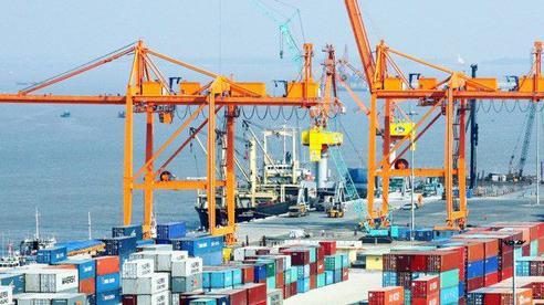 277 triệu USD hàng hoá đi EU sau 1,5 tháng EVFTA có hiệu lực