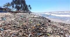 Dự kiến kiểm toán một số dự án liên quan đến môi trường