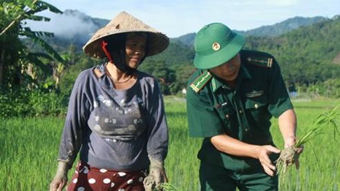 Tây Giang (Quảng Nam): Bình quân mỗi năm giảm 1,6% hộ nghèo