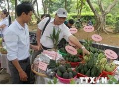 Tỉnh Phú Yên khai trương tuyến du lịch cao nguyên Vân Hòa