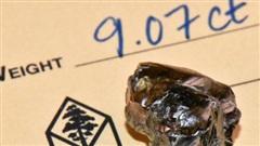 Mỹ: Tìm thấy viên kim cương 9,07 carat trong công viên