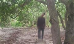Phát hiện thanh niên chết trong tư thế treo cổ trong rừng