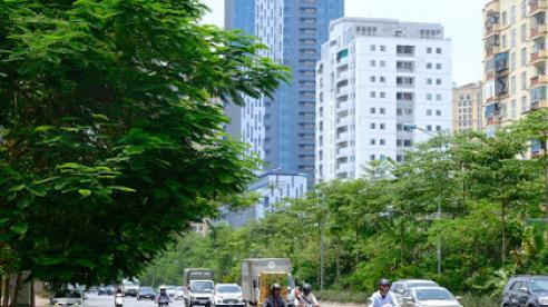 Dự báo thời tiết ngày 29/9: Hà Nội đêm mưa, trưa chiều hửng nắng