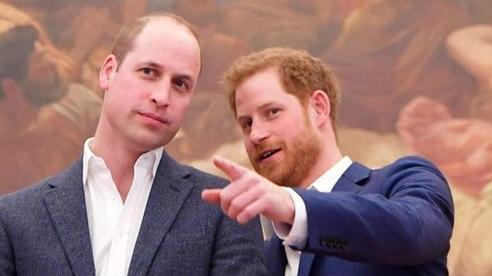 Harry xúc động khi nhận thư của anh trai William