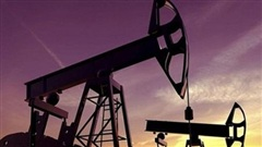 Giá xăng dầu hôm nay 28/9: Tăng nhẹ trở lại phiên đầu tuần
